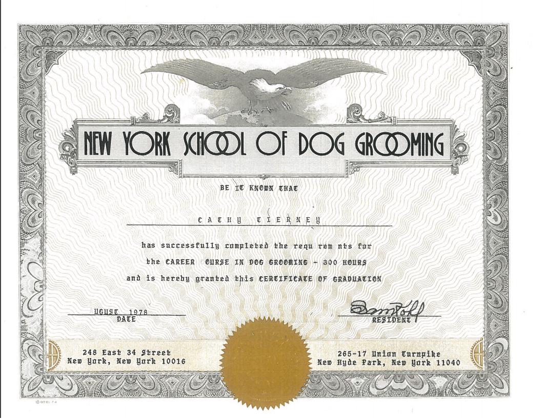 My NYSODG Diploma 1978